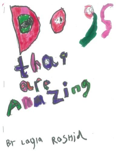 1st Grade Expert Book Cover